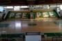 Campionato CSI: si accende la luce per il PSE Basket1953